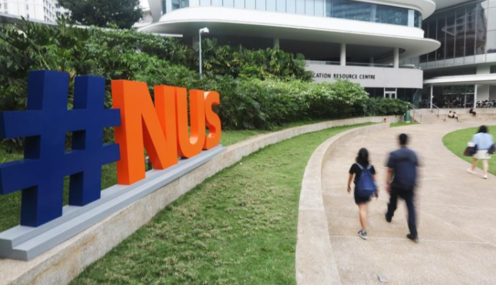 NUS Emerging Markets